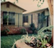Home Improvement 8