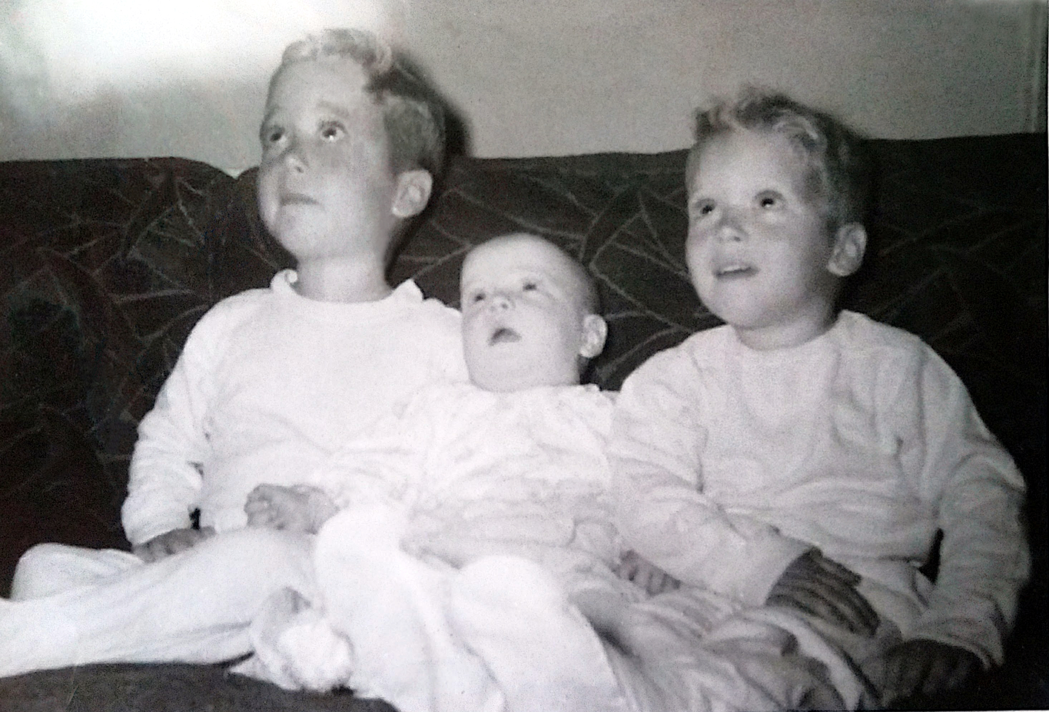 Buddy, Terry & Mark